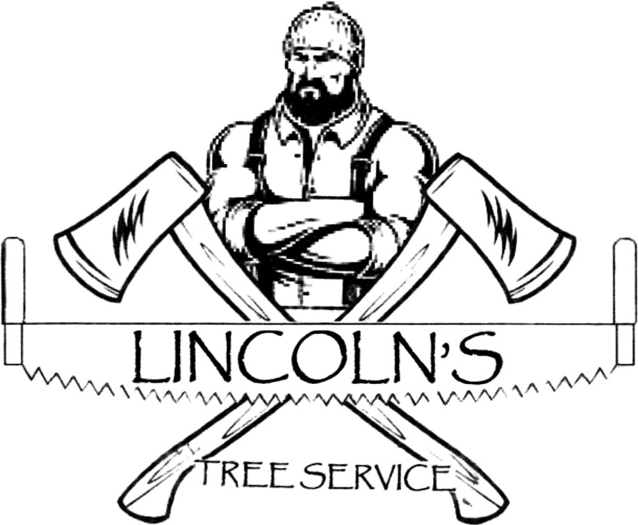 Lincoln's Tree Service and Logging